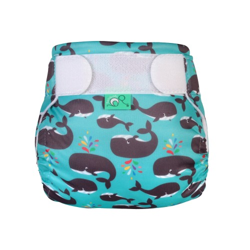 Reusable Swim Nappy Finn Front