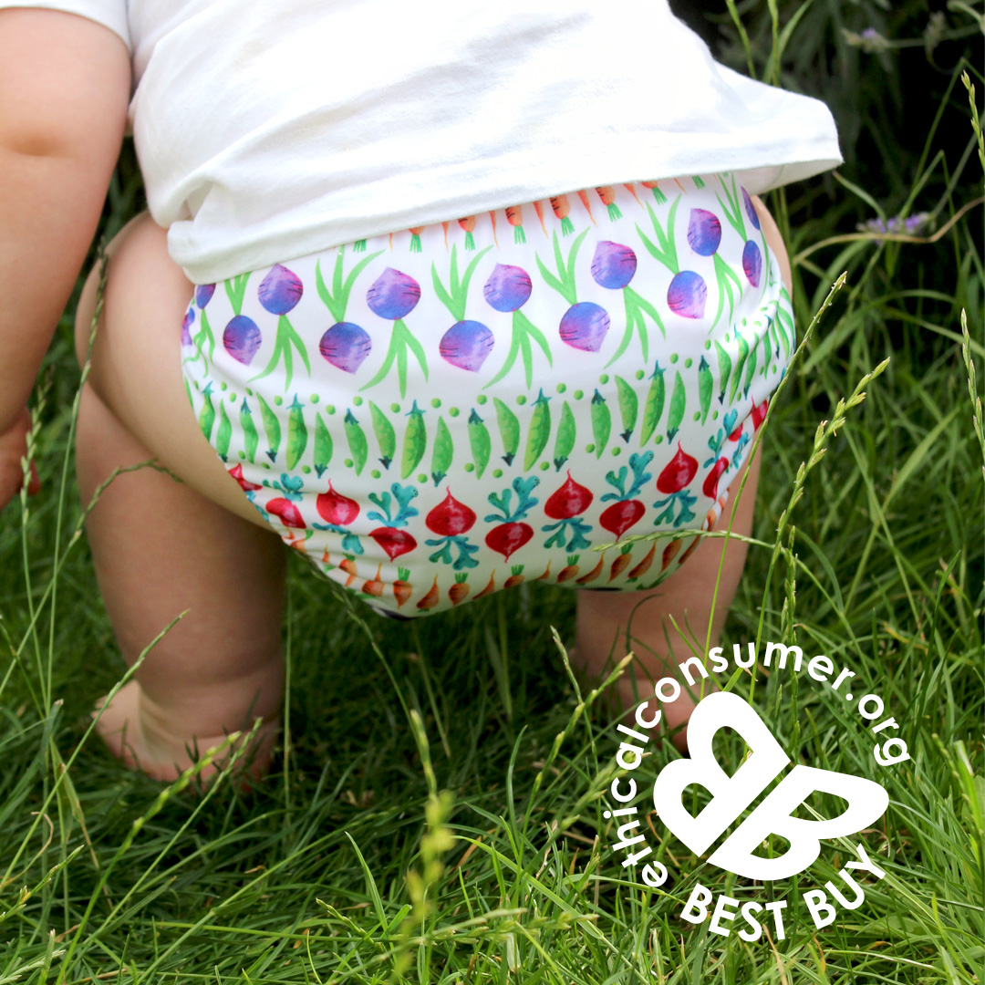 Reusable Nappies: Doing it for the kids