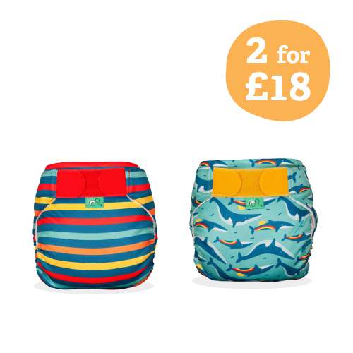 Swim Nappy 2 Pack Rainbow Whales & Stripe - Size 2